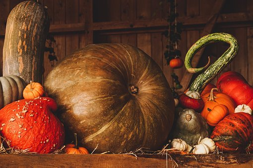 4843 free images of halloween