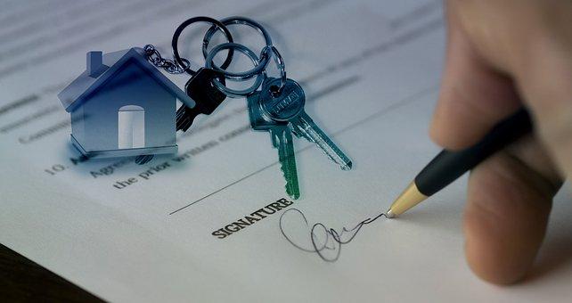 treuhand gmbh kaufen vendita gmbh wolle kaufen Immobilienmakler leere gmbh kaufen gmbh kaufen ohne stammkapital