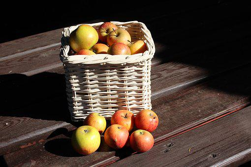Apples, Collections, Fall, Autumn, Fruit