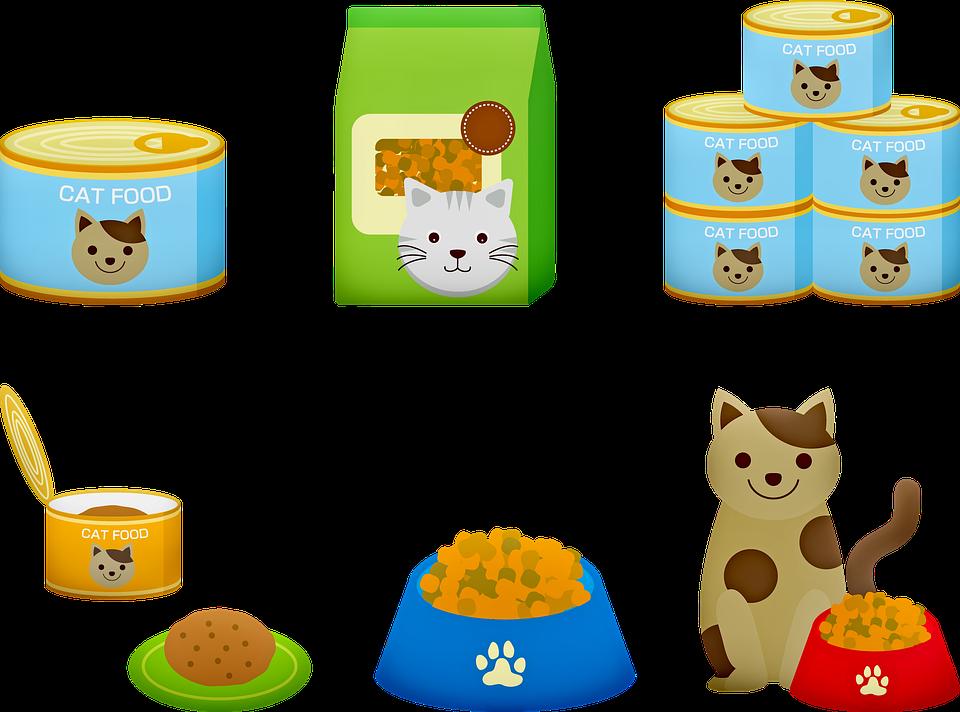 Jesť mačička pics