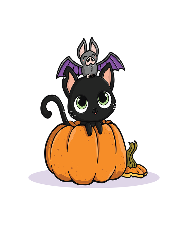 Cute Pictures Of Halloween.Halloween Cute Cat Free Image On Pixabay