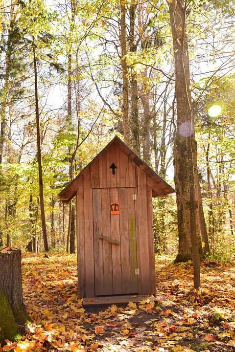 Bathroom, Toilet, Wc, Restroom, Outdoor, Forest, Autumn
