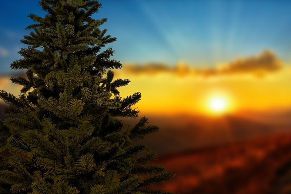 Weihnachten Sonnenuntergang · Kostenloses Foto auf Pixabay