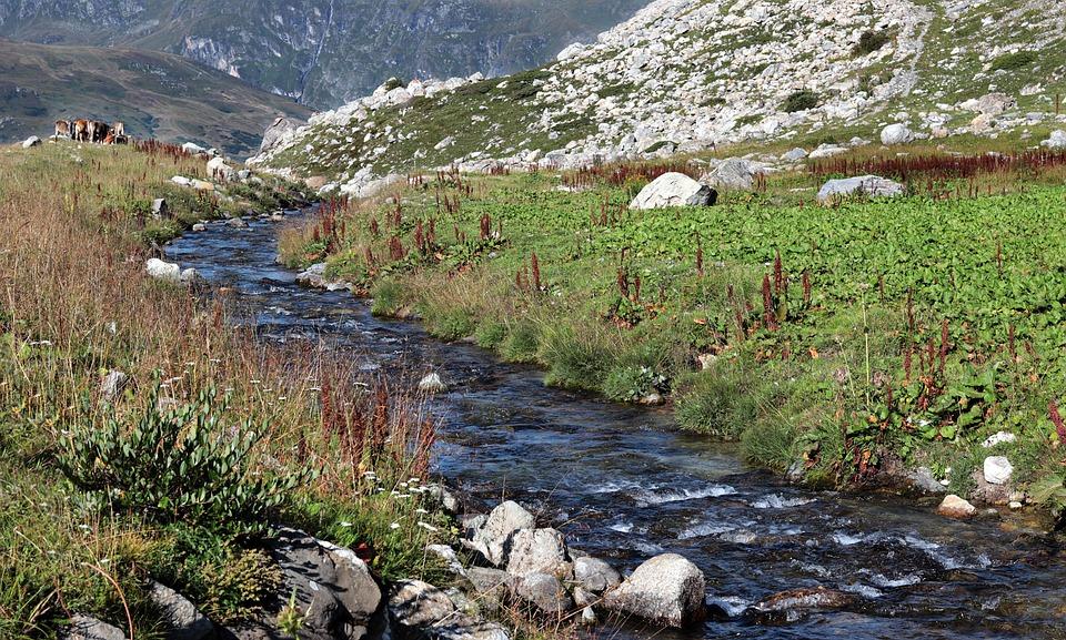 Górskie Rzeki, Łąki Górskiej, Góry, River, Panoramę Gór