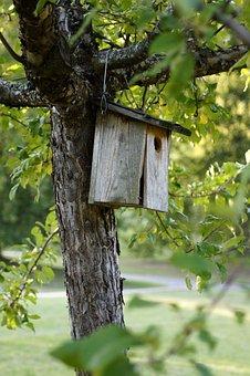 500 Free Bird Feeders Bird Feeder Photos Pixabay