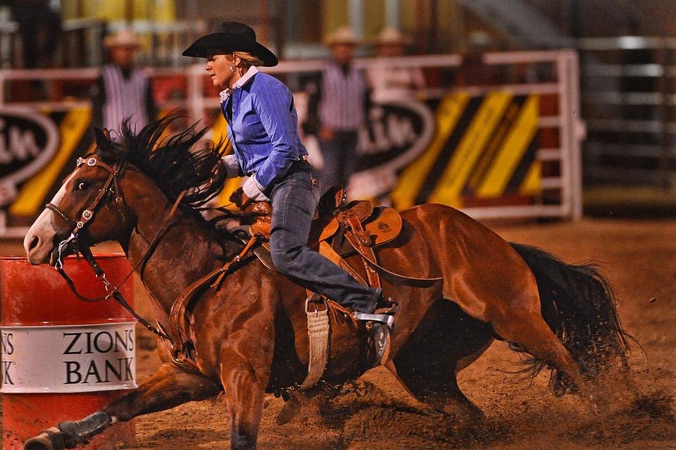 Rodeo, Barrel Racing, Horse