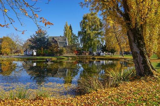 秋季牧歌, 池塘, 书Hunsrück, 水中倒影, 秋天的颜色, 金秋十月