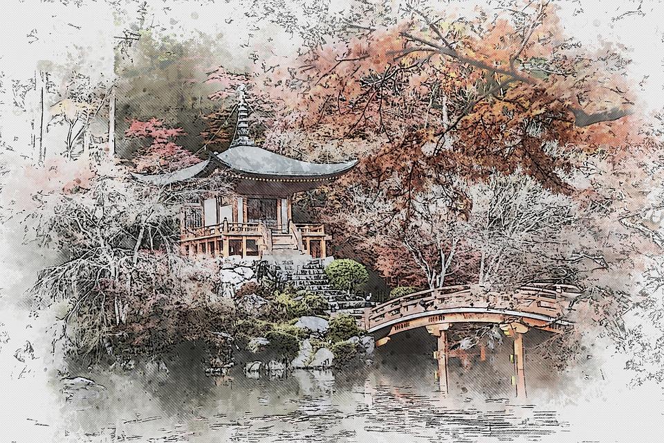 Garden, Japan, Kyoto, Asia, Nature, Plant, Landscape