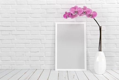 Frame De Retrato, Flor, Orquídea