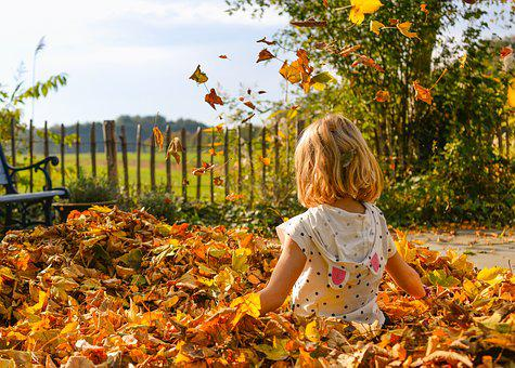 Girl, Playing, Leaves, Autumn, Happy