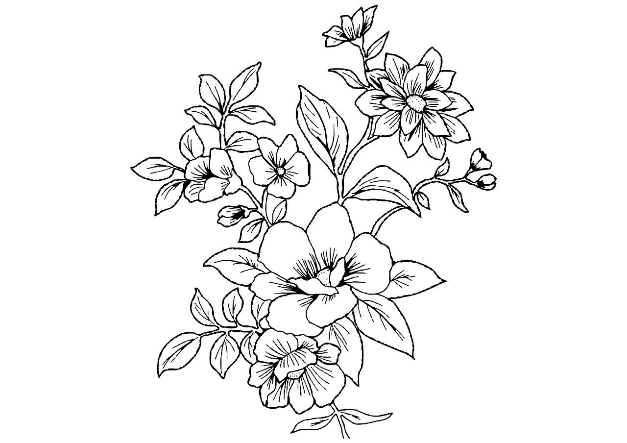 принцесса софия контурные рисунки и картинки раскраски цветы очень полезно просто