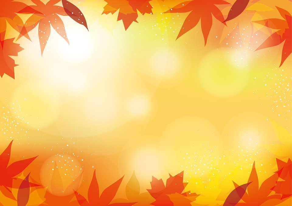 autumn background bokeh fall free image on pixabay