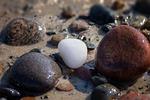 kamienie, plaży, morze