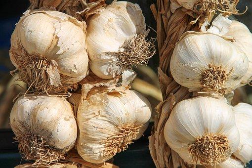 Garlic, Leek, Herb, Medicinal Plant