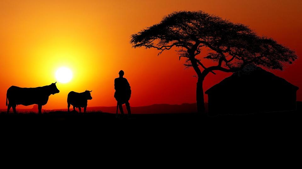 Coucher Du Soleil Afrique Photo Gratuite Sur Pixabay