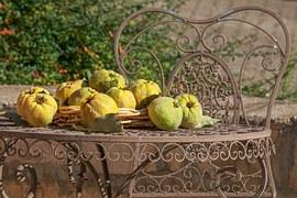 Quince, Still Life, Fruit