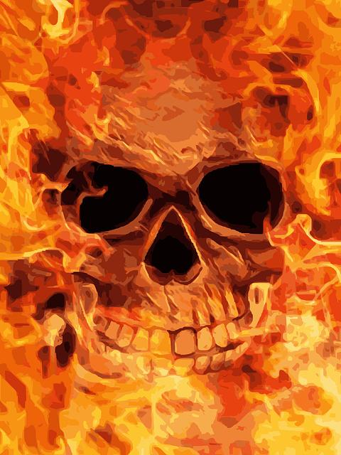 крючком картинки с огненными черепами близький