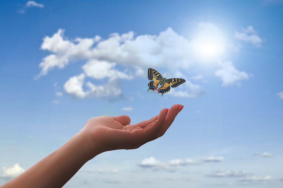 Hand, Butterfly, Clouds, Flying, Freedom, Faith