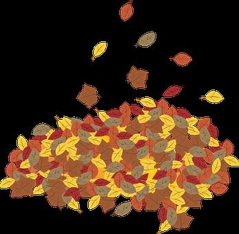 Graphic, Leaf, Leaves, Leaf Pile, Fall