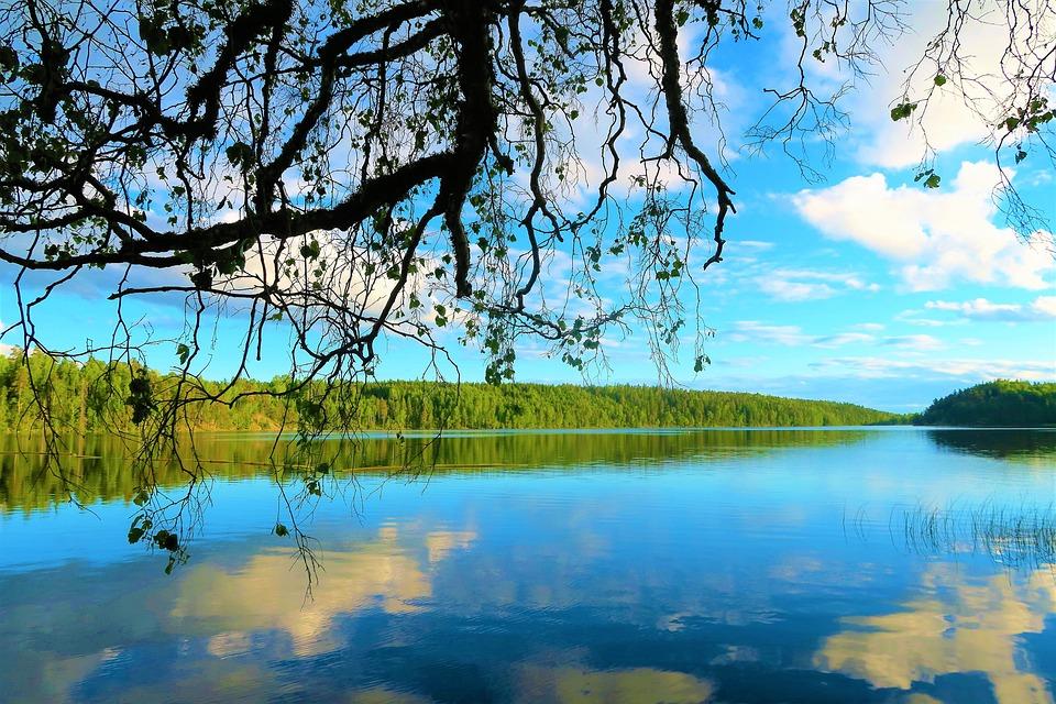 Wallpaper Fondo De Pantalla Verde Imagen Gratis En Pixabay: Paisajes Verdes Con Agua