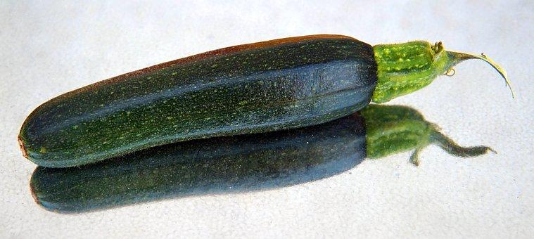 Zucchini, Small, Vegetables, Garden