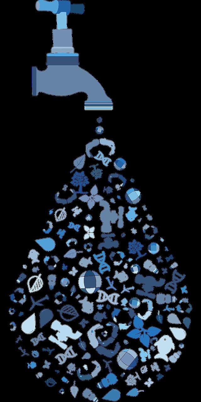 Water Efficiency EWG Guide