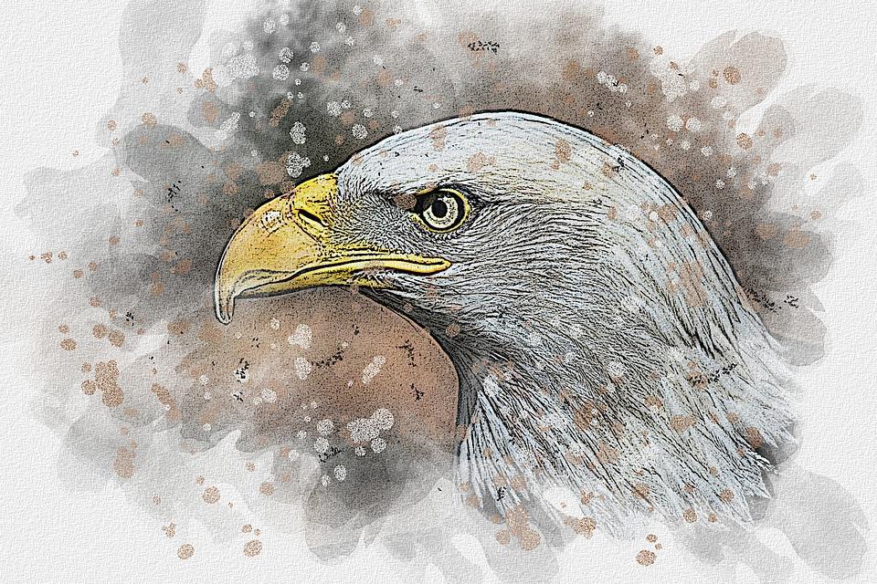 Suluboya Cizim Boyama Pixabay De Ucretsiz Resim