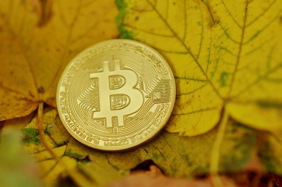 Bitcoin, Cryptocurrency, Pièces, Virtuel, Numérique