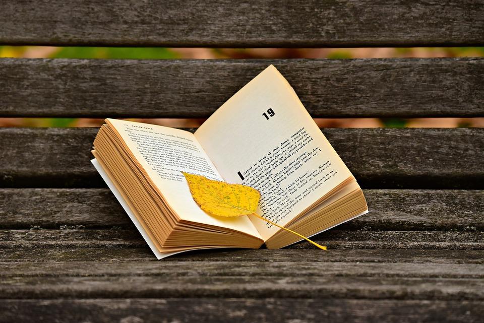 Bog, Læse, Side, Tekst, Litteratur, Læsning Spørgsmål