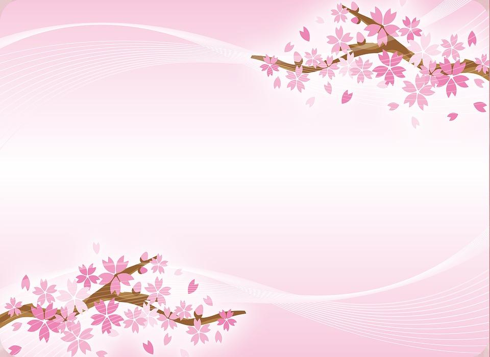 Sakura En Fleurs Japonais Image Gratuite Sur Pixabay