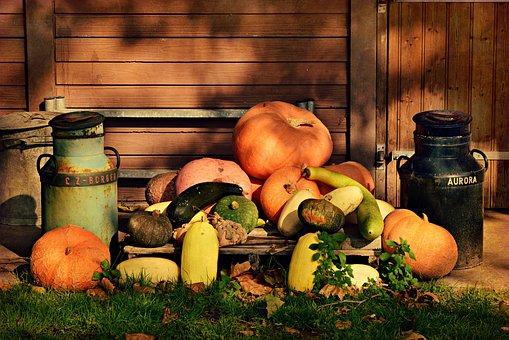 カボチャ, 野菜, 食品, 民俗, シンデレラ, ハロウィーン, 装飾