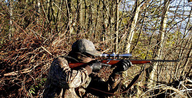 Hunting, Rifle, Weapons, Shooting