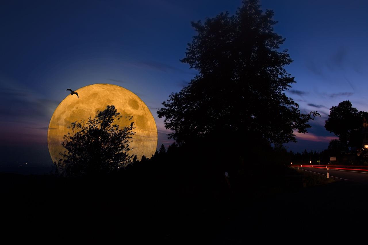 Некрещеная луна картинки модельной индустрии