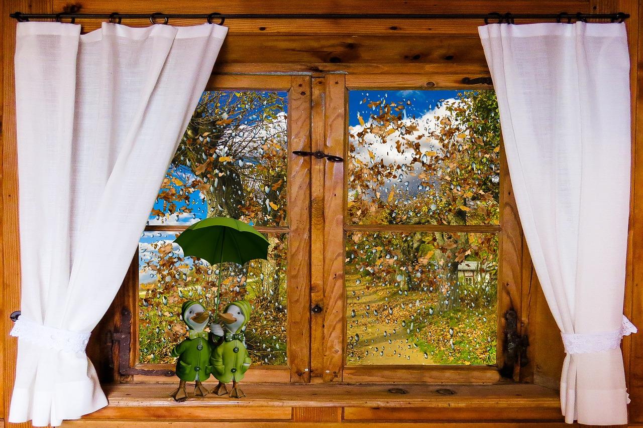 Окно шторы картинка