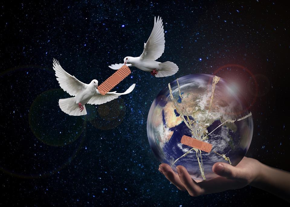 Frieden, Weltfrieden, Taube, Hoffnung, Zukunft, Welt