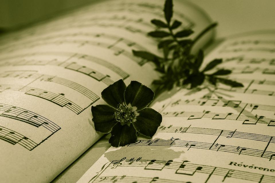 Nota Musicale, Rose, Una Rosa Appassita, Caldo Vintage