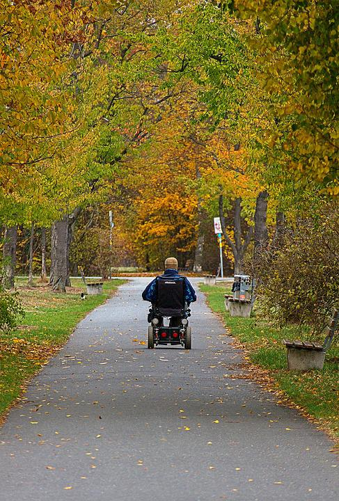 Wheelchair, Autumn, Park, Drive, Man, Movement, Senior