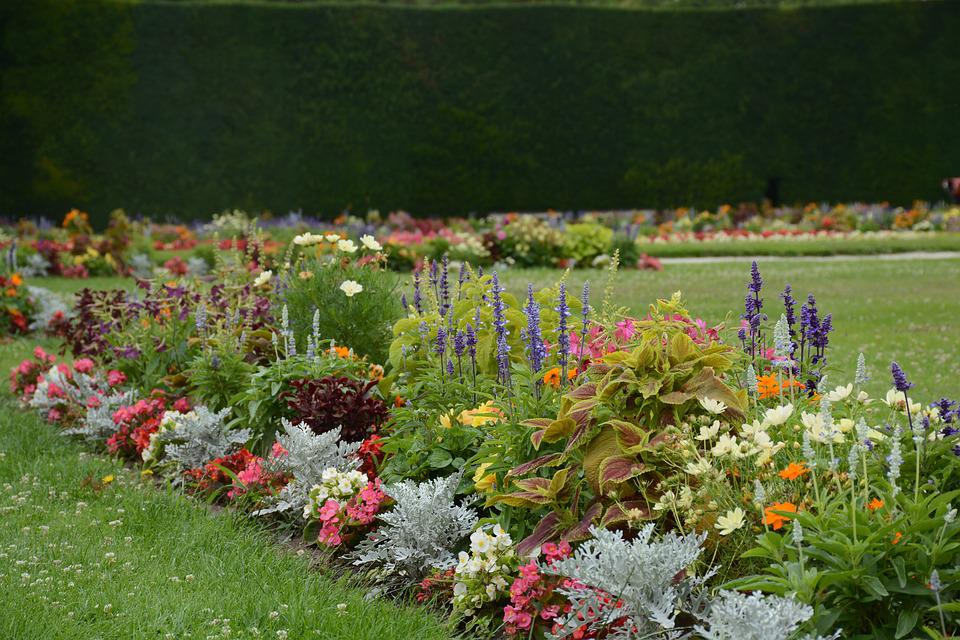 Jardin Fleurs Fleur - Photo gratuite sur Pixabay