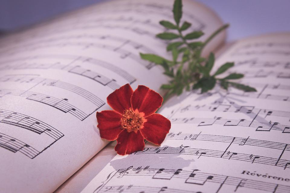 Musical Note Red Rose Free Photo On Pixabay