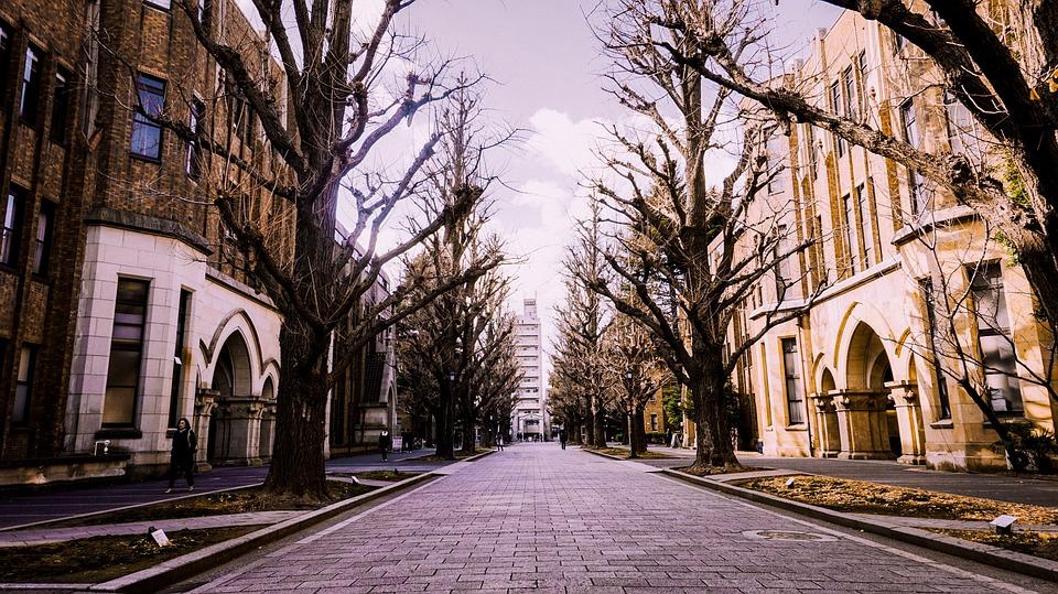 ウインター, 日本, 東京大学, 建物