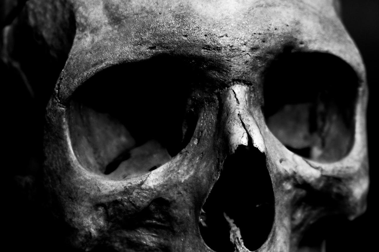 Если вам приснится ваш собственный череп – значит, вас будут терз.