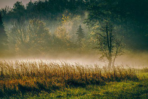nature landscapes images pixabay download free pictures