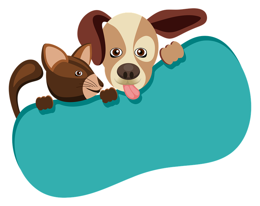 Animals Dog Cat Free Image On Pixabay