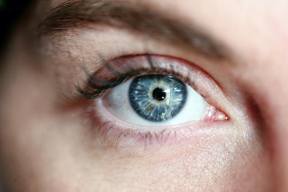 Occhio, Occhio Blu, Donna, Ciglia, Ritratto, Viso, Blu