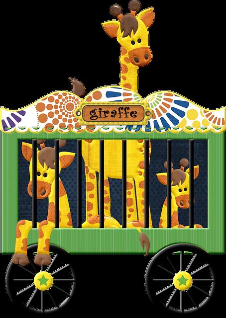 Animals Giraffe Circus Free Image On Pixabay
