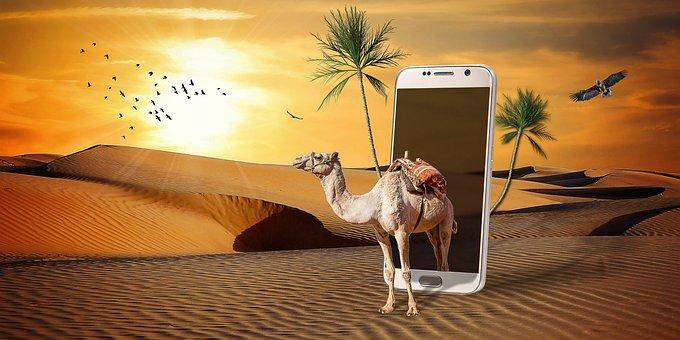 Manipulation, Camel, Phone, Desert