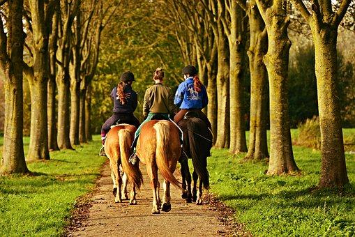 Horse Rider, Horse Woman, Horseback