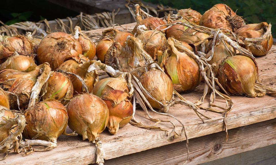 Cebolas, Produtos Hortícolas, Alimentos, Saudável