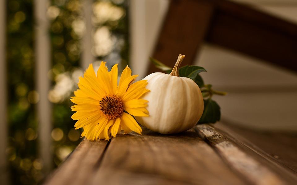 Осень - самое уютное время года - Страница 2 Thanksgiving-3811492_960_720