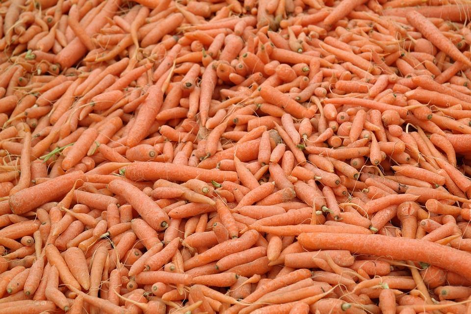 Karotten Mohren Gemuse Kostenloses Foto Auf Pixabay